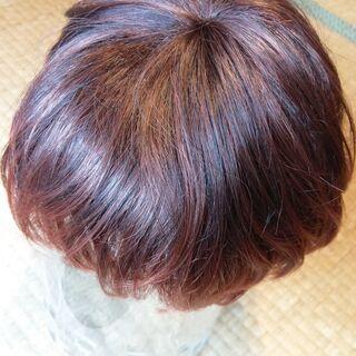 【美品】赤毛 ウィッグ ショートカット