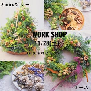 Xmas リース&卓上ツリー workshop @新高円寺