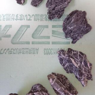 水槽の石 8つ レイアウト アクアリウム