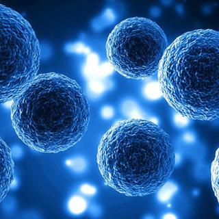 病気に悩む 富山 の皆様|細胞科学の真実を知れば可能性の道が開け...