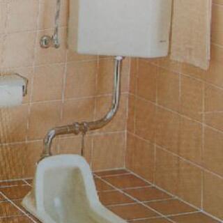 和式トイレから洋式へ
