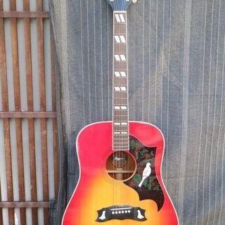 Morris モーリス アコースティックギター ハミングバード ...