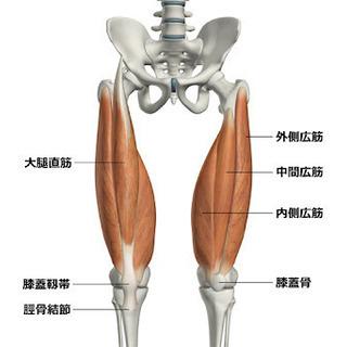 太腿が太くなる方の為の太ももストレッチ