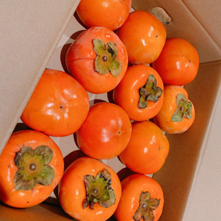 柿 和歌山産