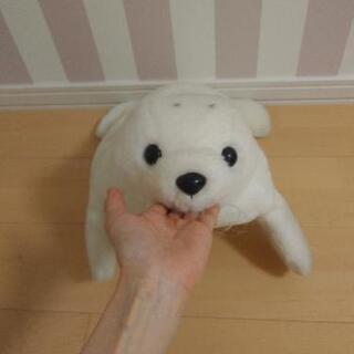 【かわいい!】水族館購入!ごまちゃんのティッシュカバー☆