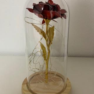 【美女と野獣】ガラスの薔薇