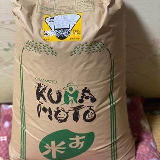 新米 令和2年 阿蘇コシヒカリ 30kg