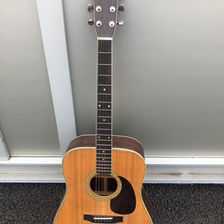 Morris 楽器 ギター