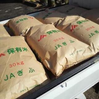 令和2年度年度産 岐阜県ブランド米 ハツシモ はつしも 30kg...