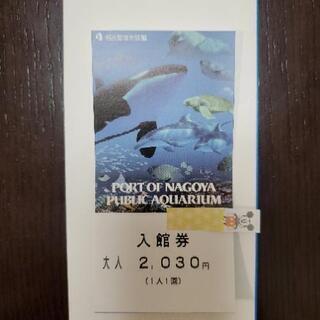 お譲り先決定 名古屋港水族館 入館券 大人 1枚