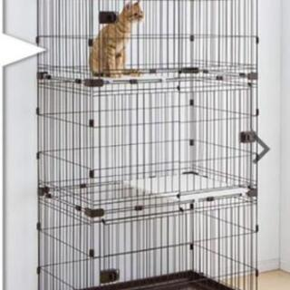 猫用ケージ譲ってください🐈️ご覧頂き協力ありがとうございました🐈️