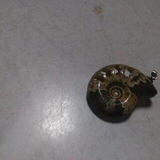 巻貝のブローチ(中古)