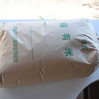 令和2年産新米 コシヒカリ 玄米30kg