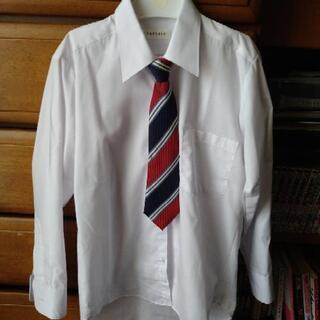 男の子 Yシャツとネクタイ