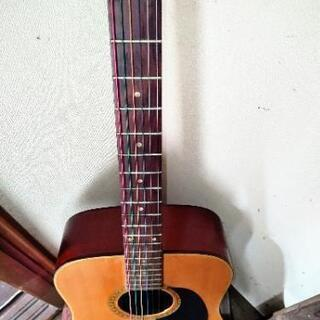 昭和ヴィンテージ フォークギター!
