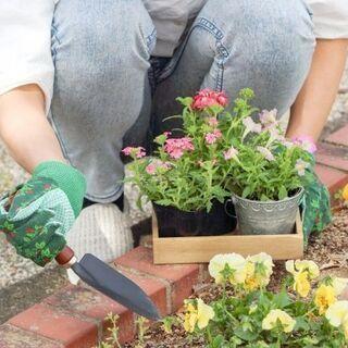 このご時世いろいろあるけど…,みんなで花を植えましょう!(苗植え大会)