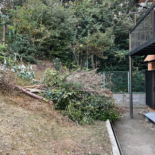 伐採した庭木の処分