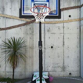 バスケットゴール(ライフタイム社 LT-1531)