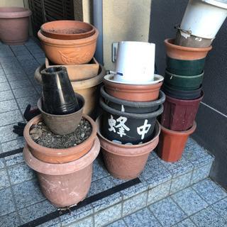 植木鉢 土ごと