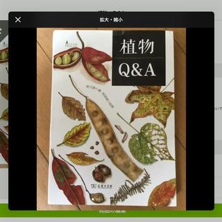 植物 Q &A  中国語 本 郑元春 林丽琪