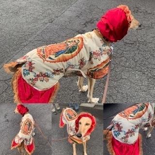 マリア様柄 サイトハウンド用コート(犬服)