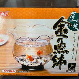 金魚鉢 ジャンク