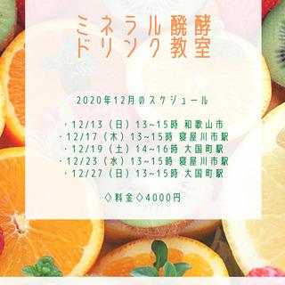 【12/23】毎日飲んで腸美人!ミネラル醗酵ドリンク教室