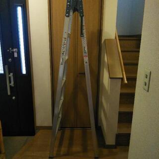 梯子5段の画像