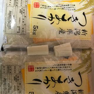 【ネット決済】新潟県産 つきあかり 10キロ分 おまけ付き