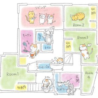 1部屋のみ!猫シェア! 四季薫るデザイナー住宅!  最上位エリア!!
