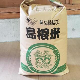 [令和2年度産]きぬむすめ 玄米20kg  一袋限定
