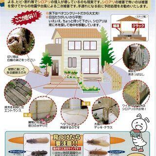 白蟻・害虫からお家を守るプロ集団