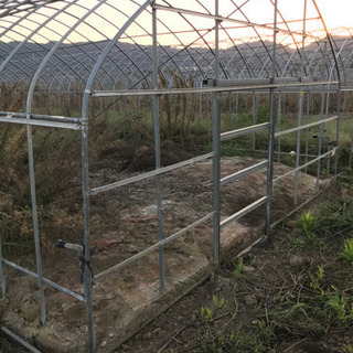 ビニールハウス 解体無料 パイプハウス 温室