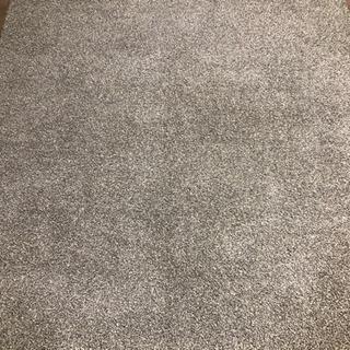 【ネット決済】カーペット2畳