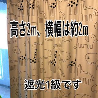 一枚カーテン 遮光1級