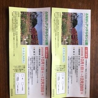 千葉県アンデルセン公園チケット2枚 有効期間12月28日の画像