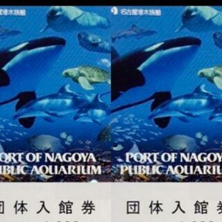 名古屋港水族館 入館券 チケット 2枚 A