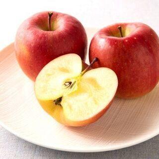 青森 りんご サンフジ家庭用 1.5kg 発送のみ