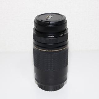Canon EF 75-300mm F4-5.6 Ⅱ
