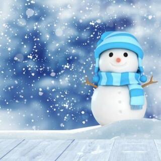 除雪/排雪/カーポート-車庫/雪庇-屋根雪下ろし/格安!!