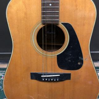 値下げ★中古★アコースティックギター Morris MD-501 ジャンク品 − 奈良県