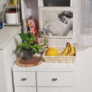 【ネット決済】食器収納棚 台所 食器棚 木製