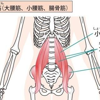 腰痛・反り腰解消の為の腸腰筋ストレッチ