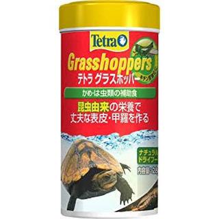 11月までの為!特価!! テトラ グラスホッパー28g 亀の餌