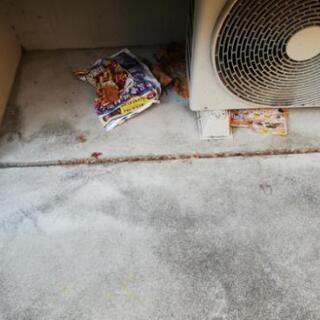 【急募】ハウスクリーニング、定期清掃作業
