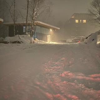 排雪❗️除雪❗️パンダのストレート‼️
