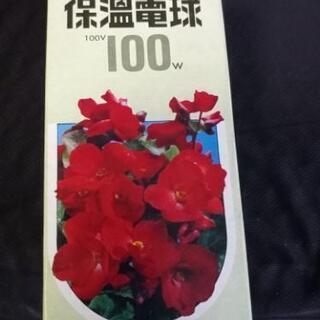 保温球 100v100w