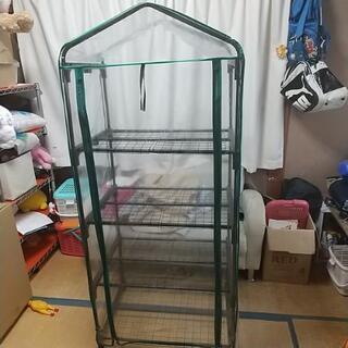 ビニールハウス☆ミニ温室の画像