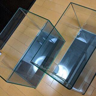 12/31希望 レグラス 40cm水槽 2本セット