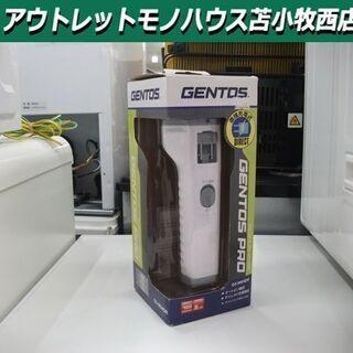 新品 懐中電灯 ジェントス 直接充電式  GS-M04DR GE...